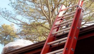 Ladder-Accident-Lawyer